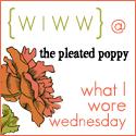 What I Wore Wednesday