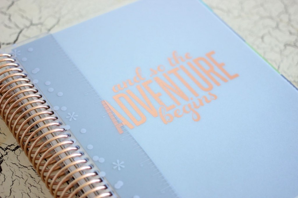 limited edition rose gold Erin Condren Life Planner