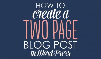 How to Create a 2-page blog post in WordPress